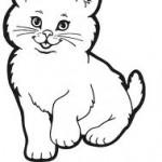 Ve Veverské Bítýčce ubili boxerem kotě