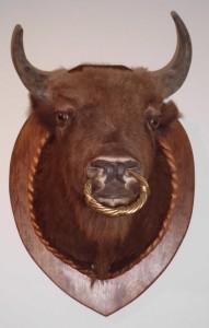Zubří hlava Pernštejnů