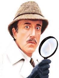 Inspektor veřejného pořádku
