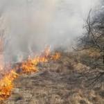 Požár lesa v Újezdu u Tišnova