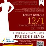 Úvodní ples sezony 2013 v Drásově