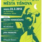 Devátý reprezentační ples města Tišnova