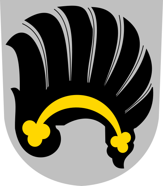 Logo Lomnice