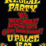Reggae večer U Palce v Tišnově